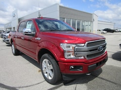 2019 Ford F-150 Platinum Truck for sale in Fort Wayne, IN