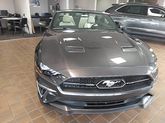 new 2019 ford mustang for sale in fort wayne in near ossian roanoke columbia city. Black Bedroom Furniture Sets. Home Design Ideas