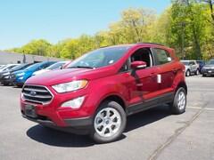2019 Ford EcoSport SE AWD SE  Crossover