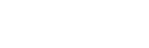 Borgman Ford