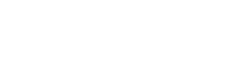 Borgman Auto of Holland