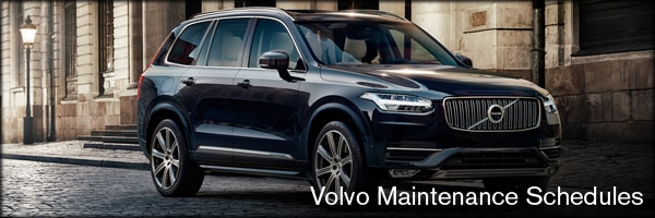 Service package of village volvo