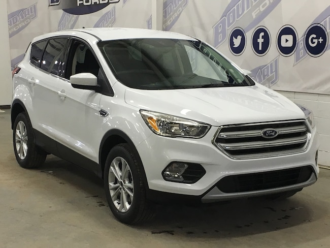 2019 Ford Escape SE Sport Utility