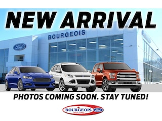 2019 Ford EcoSport SE 2.0L I4 200A SUV