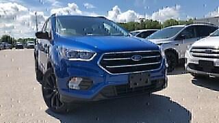 2019 Ford Escape SE 1.5L I4 ECO 200A SUV