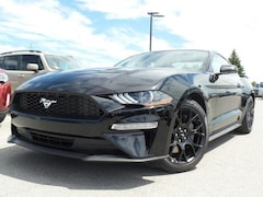 2019 Ford Mustang Ecoboost 2.3L 101A Coupe
