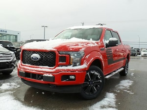 2019 Ford F-150 *Demo* XLT 5.0L V8 302A