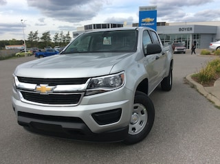 2019 Chevrolet Colorado WT | REAR CAMERA | TEEN DRIVER Truck Crew Cab