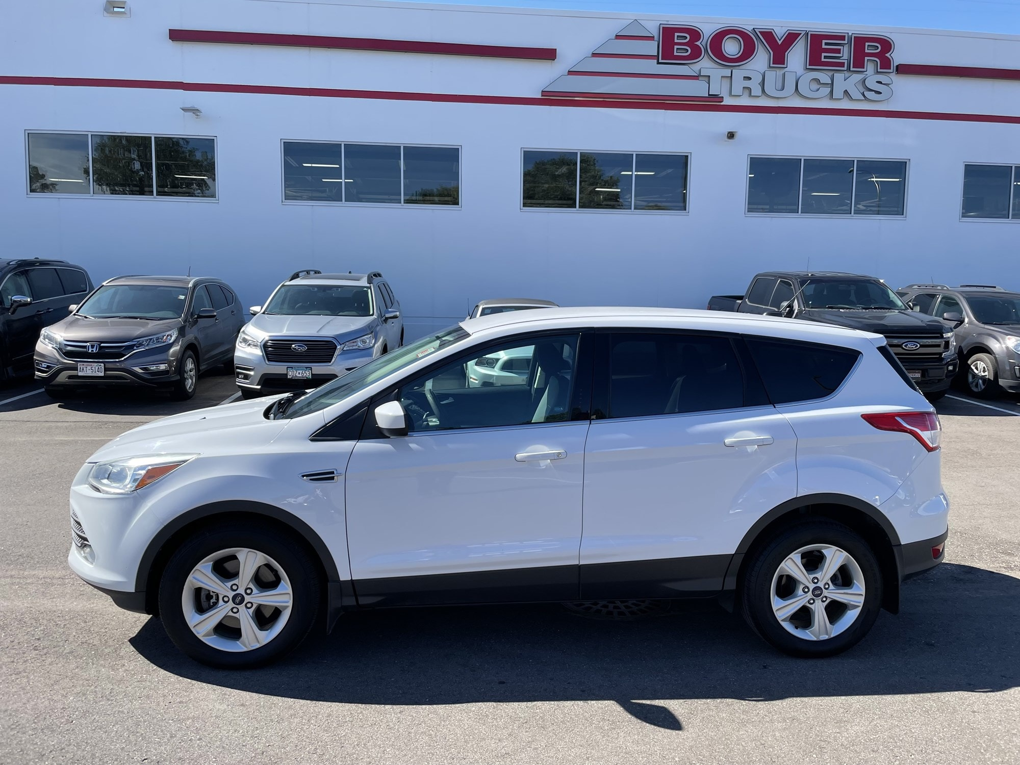 Used 2014 Ford Escape SE with VIN 1FMCU0G95EUB63504 for sale in Minneapolis, Minnesota