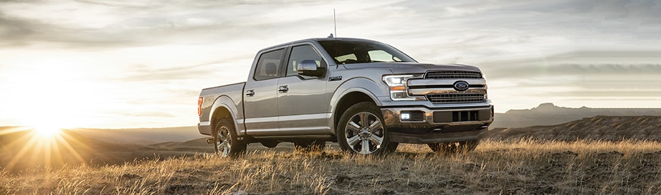 Ford F-150 in a field