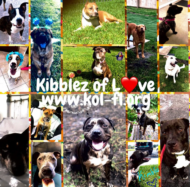 Kibblez of Love West Palm Beach FL