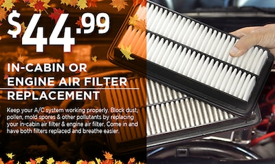 In-Cabin OR Engine Air Filter Replacement