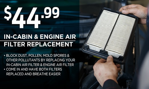 In-Cabin & Engine Air Filter Replacement