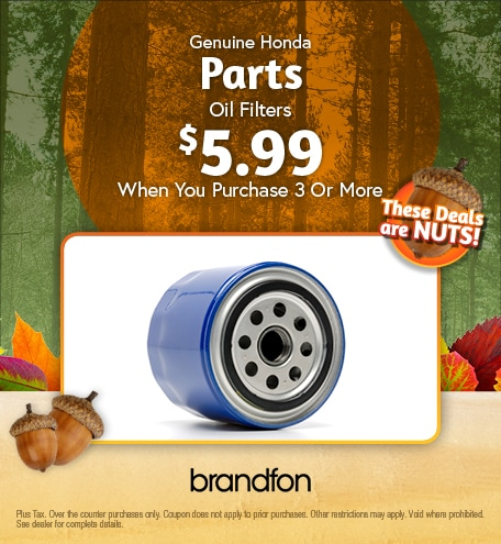 Oil Filters $5.99 when you purchase 3 or more
