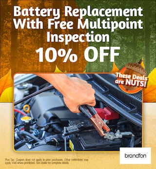 Battery Replacement With Free Multipoint Inspection 10%
