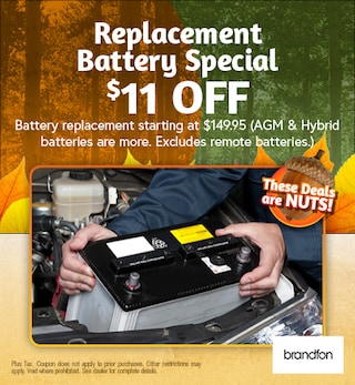 Replacement Battery Special $11 off