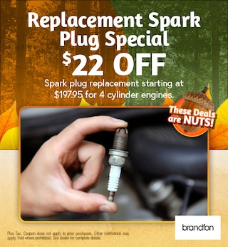 Replacement Spark Plug Special $22 off