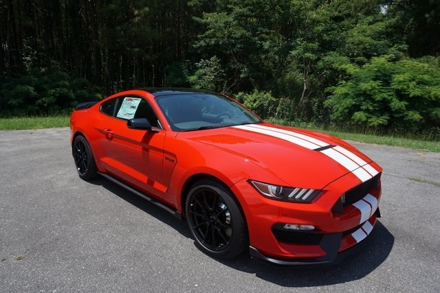 2019 Ford Mustang Car