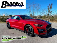 2020 Ford Mustang Shelby GT500 Car