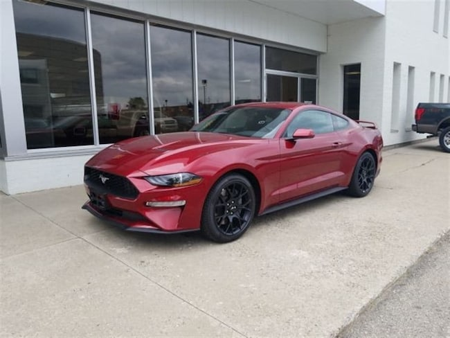 2019 Ford Mustang EcoBoost - MANAGER'S SPECIAL! Coupe