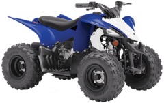 2019 YAMAHA Raptor 50 =ON ORDER=