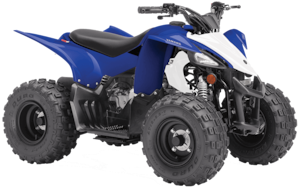 2019 YAMAHA Raptor 50 =IN STOCK=