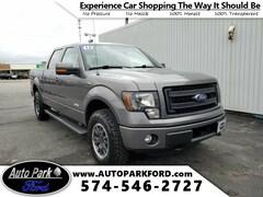 2013 Ford F-150 FX4 Truck in Sturgis, MI