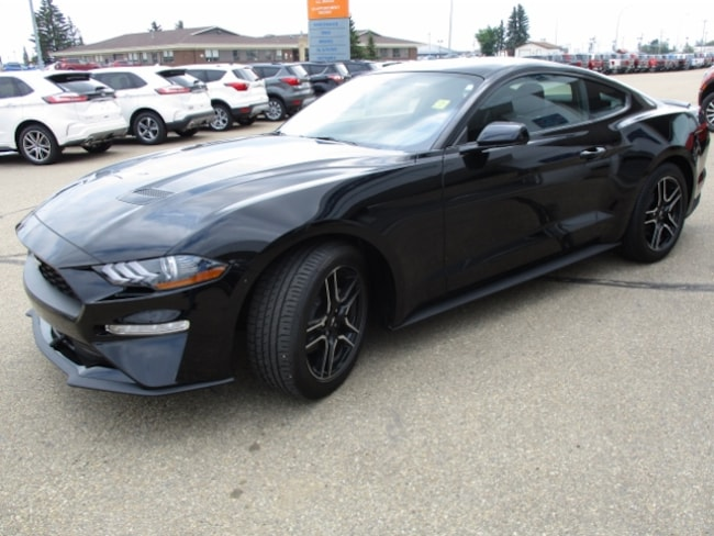 New 2019 Ford Mustang Ecoboost Coupe in Edmonton Area