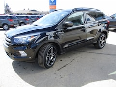 2019 Ford Escape SEL Sport Appearance SUV