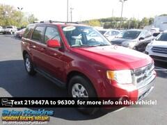 2010 Ford Escape Limited 4WD SUV