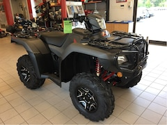 2019 HONDA TRX500 Rubicon Deluxe - SAVE $500 at Bridgewater Honda Powerhouse