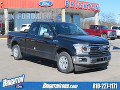 New 2019 Ford F-150 XLT Truck for Sale in Brighton, MI