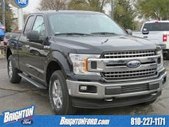 New 2018 Ford F-150 XLT Truck 1FTEX1EB4JKG12077 for Sale in Brighton, MI