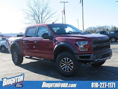 New 2019 Ford F-150 Raptor Truck for Sale in Brighton, MI