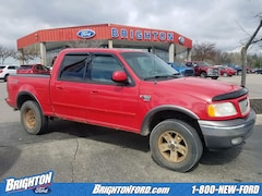 Used 2002 Ford F-150 XLT Truck under $10,000 for Sale in Brighton, MI