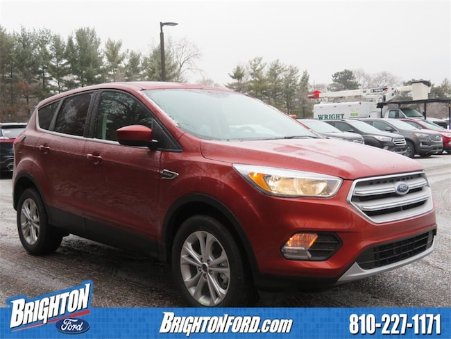 New 2019 Ford Escape SE SUV For Sale/Lease Brighton, MI
