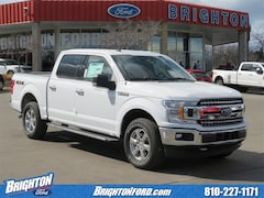 New 2019 Ford F-150 XLT Truck 1FTEW1EP0KFB27721 for Sale in Brighton, MI