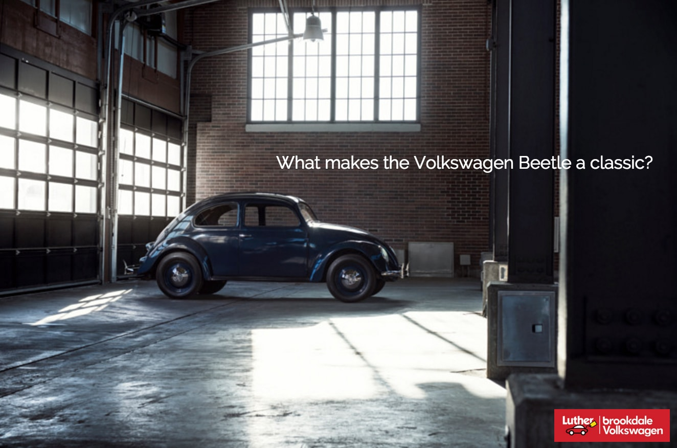 Brookdale Volkswagen | What makes the Beetle a Classic? | Luther ...