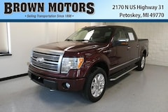 2009 Ford F-150 4WD Supercrew 145 Platinum Crew Cab Pickup