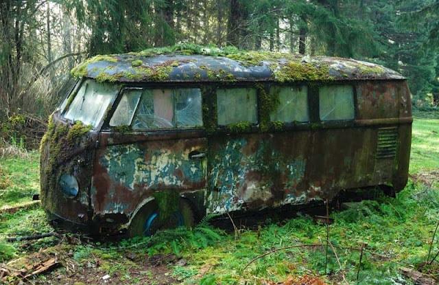Brown S Car Stores Mossy Vw Van