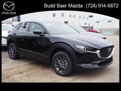 New 2021 Mazda Mazda CX-30 Preferred SUV 3MVDMBCLXMM225194 215136 For Sale in Pittsburgh