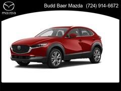 2021 Mazda Mazda CX-30 Premium SUV 3MVDMBDLXMM241412 215230