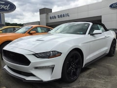 2018 Ford Mustang Ecoboost Convertible Convertible