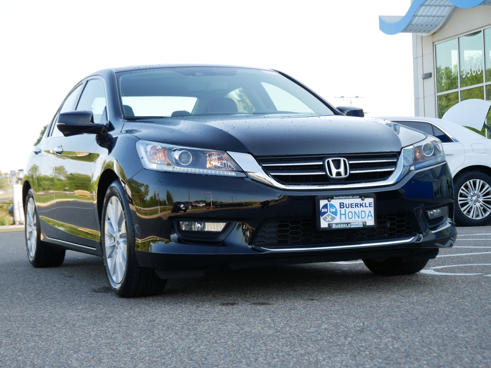 Used 2014 Honda Accord EX-L with VIN 1HGCR2F89EA116098 for sale in Saint Paul, Minnesota