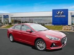 New 2019 Hyundai Sonata SE Sedan 5NPE24AF3KH820461 for Sale in St Paul, MN at Buerkle Hyundai