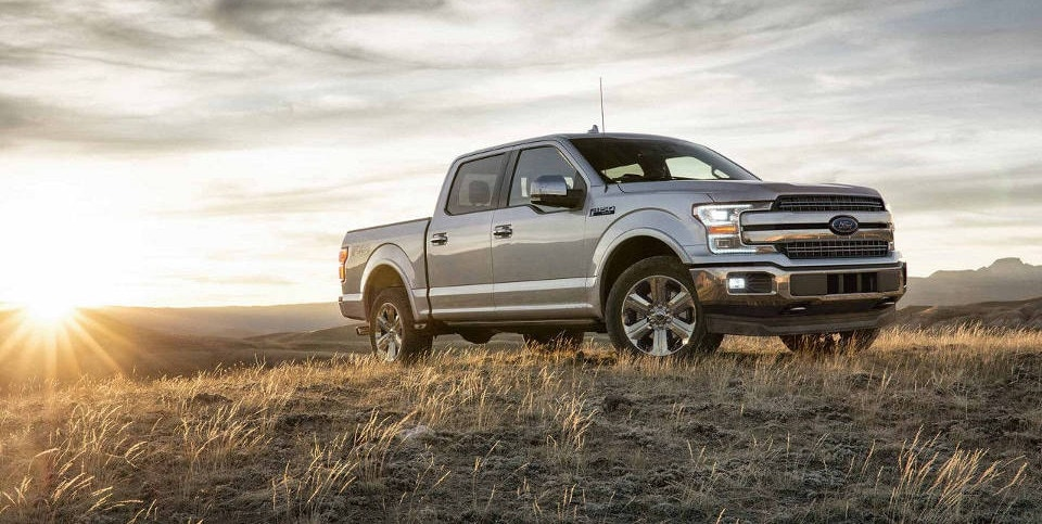 A silver Ford F-150 parked on a grassy hill