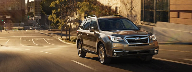 Subaru Dealers Nj >> Subaru Forester Subaru Dealer Near Cape May Nj Burke Subaru