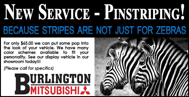 Mitsubishi Vehicle Pin-striping Service
