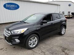 New  2019 Ford Escape SE SUV for sale in Lodi, WI