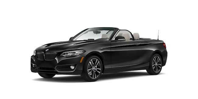 2020 BMW 230i xDrive Convertible